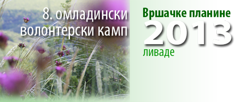 omladinski-volonterski-kamp-dugme-2013-1