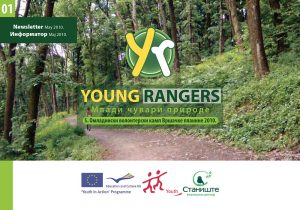 01 Young Rangers Newsletter-1