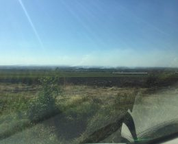 09 Paljenje njiva u okolini Vrsca 2