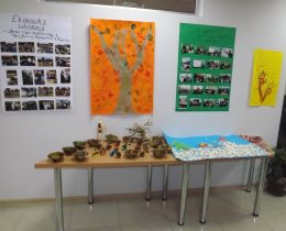 Konferencija-Smederevo ekoloski grad-2018-08