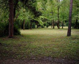 06 Senovite staze – Gradski park u Vrscu