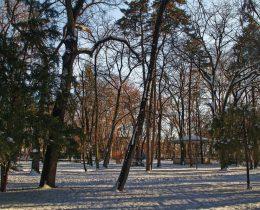 08 Zima – Gradski park u Vrscu