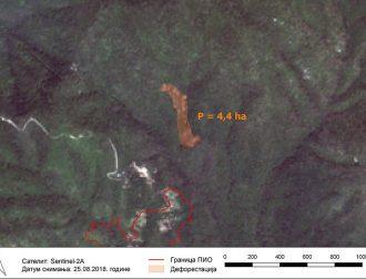 Deforestacija 4 – Povrsina