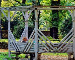 08 Bela klupa – Gradski park u Vrscu