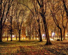 11 Vodotoranj nocu – Gradski park u Vrscu