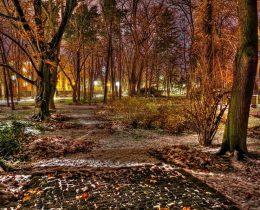 12 Park nocu – Gradski park u Vrscu